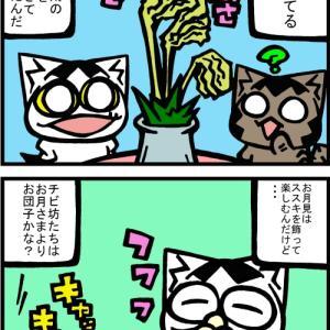 チビタマ日記 その2082