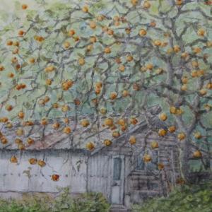 絵「柿の木と倉庫」(番外)
