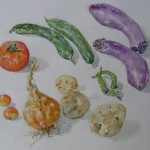 身近なものスケッチ№17「菜園収穫」