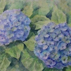 絵「紫陽花」(旧作)