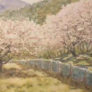 水彩お絵描き思い出めくり№193「湯野の梅林」