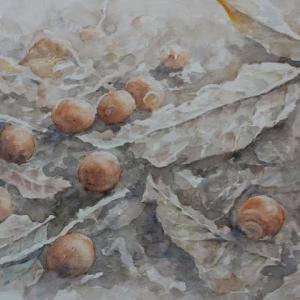 水彩お絵描き思い出めくり№207「秋の終わりは春の始まり」