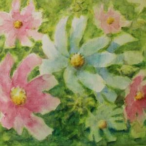 水彩お絵描き思い出めくり№237「絹目のコスモス」