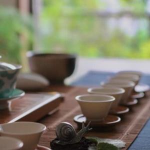 カタツムリの茶席