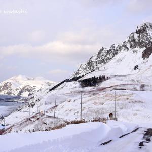 元地の雪景色