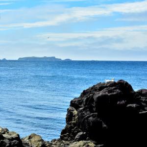 レブンブルーの海