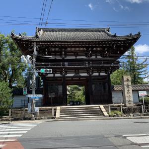 【京都ひとり旅Day2②】広隆寺で弥勒菩薩をひとりじめ!