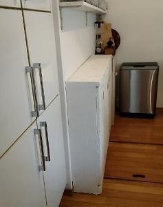 いつするの?  「キッチン収納庫 新しく」