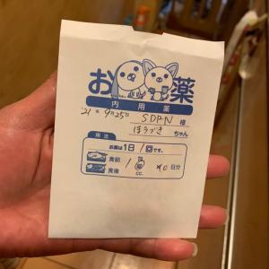 【ホオズキちゃん】膿が再発(><)