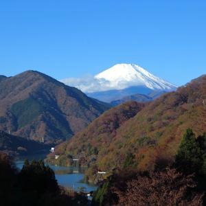 丹沢湖の紅葉と富士山を撮ったぜ!の画像