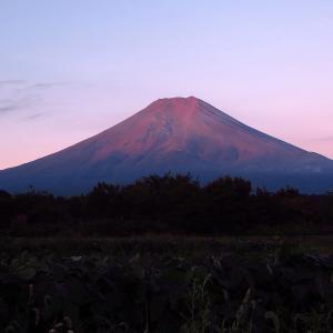北富士演習場で赤富士を撮ったぜ!の画像