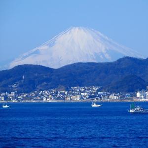 東京湾フェリーで海上から富士山を撮ったぜ!の画像