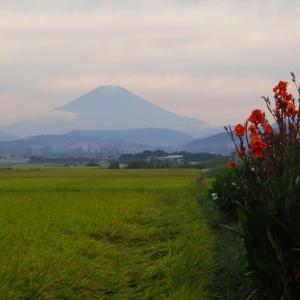 富士山初冠雪だぜ!の画像