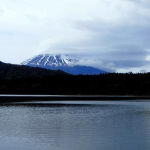 令和初富士山&茶摘み娘祭りだぜ!の画像