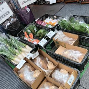 今日は、筍が来ています!壇さんのお野菜