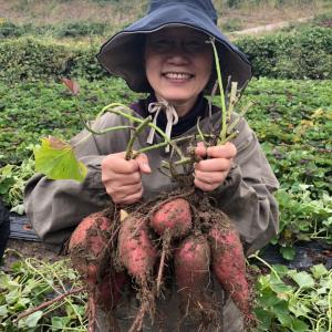 自然栽培のお野菜を食べに来ませんか!