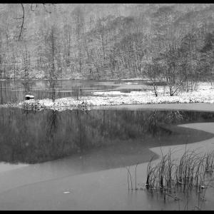 No.958              「厳冬の始まり - 新雪」