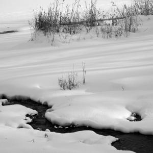 No.1057              「雪の描く造形」