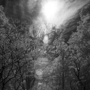No.1199, 1200           「空の光と雲の狂乱」
