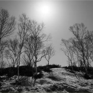 No.1538-1541   「四月の残雪 (5)」