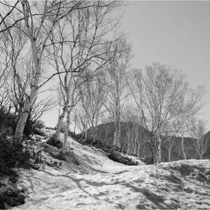 No.1550-1553       「四月の残雪 -8-」