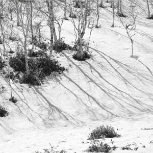 No.1554-1556   「四月の残雪 -9-」