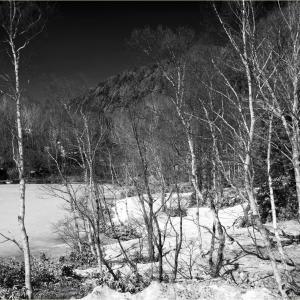 No.1560 - 1564             「(四月の回顧) IRで捉えた残雪高原 -2-」