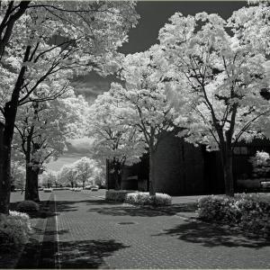 No.1605 - 1608         「晴と曇りと雨」