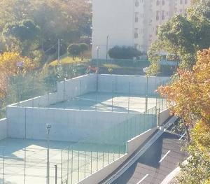 11月29日:金曜日の「テニス」再開!