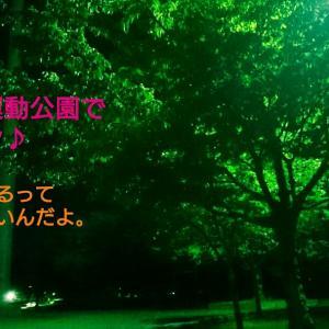 砺波総合運動公園でナイトラン(9/26)
