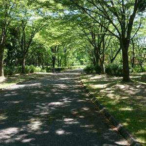金沢市北部公園RUN(ランニング教室) 7月の日程