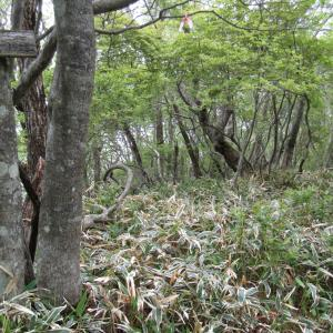 地蔵岳と小沼外輪山 …その4