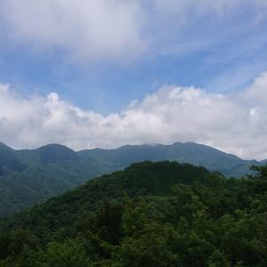 天狗山~鏡台山周回 …その3