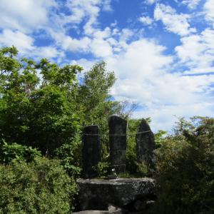 鷹巣山、鈴ヶ岳 …その3