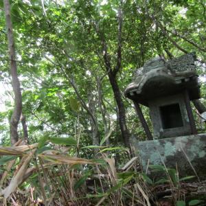 鷹巣山、鈴ヶ岳 …その4