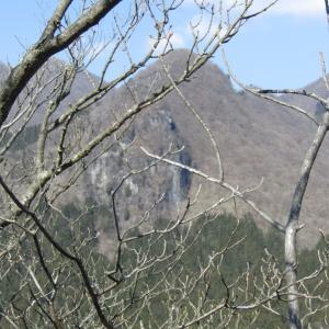 鷹ノ巣山 …その2