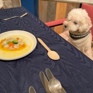 お食事体験