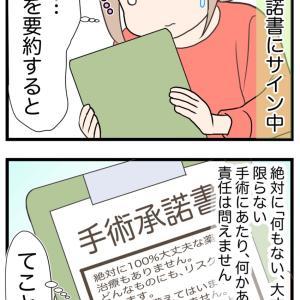 12、愛犬の命の保障はない【愛犬の避妊手術編】