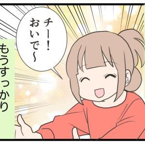 24.愛犬の術後の変化【愛犬の避妊手術編】(終)