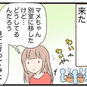⑥怒られると思った愛犬の行動(1)【初代愛犬編】