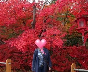 紅葉が真っ赤です♪