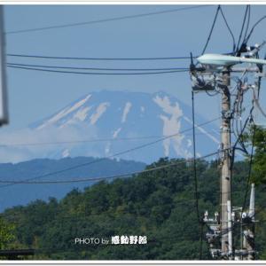 梅雨時の晴れ間の富士山2006