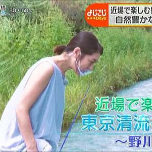 多摩地区情報『よじごじDays』200908~小金井市・国分寺市~