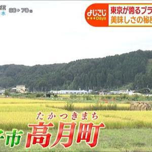 多摩地区情報『よじごじDays』201007~八王子市~