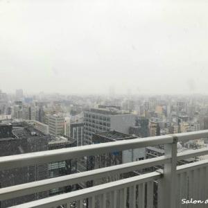 ~まさかの雪~