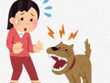 【画像】 「うちの犬が追いかけたら配達員が荷物を放り出して帰りました」 ⇐ とんでもない飼い主だとネット騒然