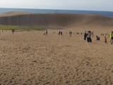 【動画】 鳥取砂丘がとんでもないことに・・ 「誰もこの人出は予想しなかった」 県外ナンバー車で渋滞