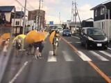 【動画】 子供たちが渡ろうとしているのにいるのに全く車が止まらない横断歩道が話題に 小山市県道33号