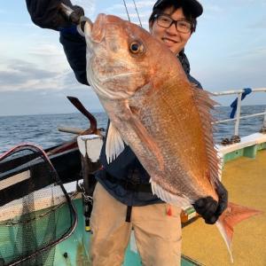 女子でも80UP 真鯛、サクット釣りますよー!!