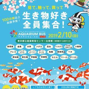 告知 2月10日 第18回アクアリウムバスが浅草で開催・・・